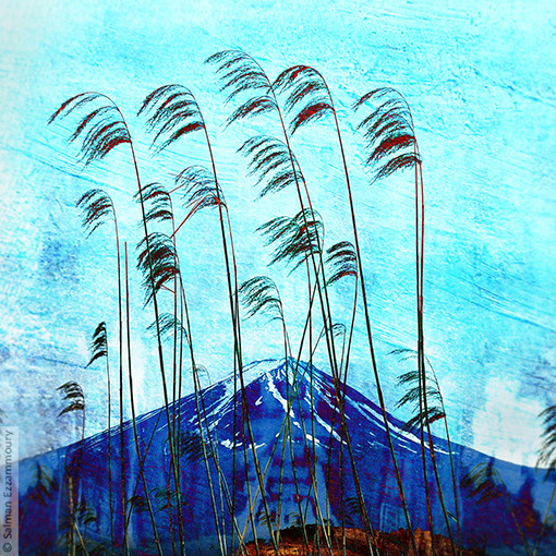 De Heilige Berg - Fujikawaguchiko